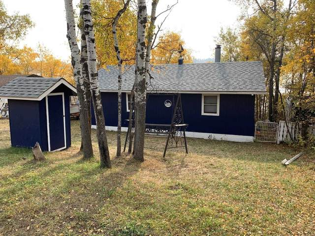 13 Lakeview Drive, Hardisty, AB T0B 1V0 (#E4265435) :: The Foundry Real Estate Company