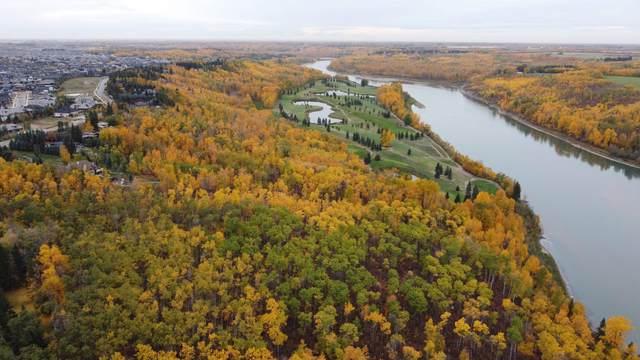 17303 23 AV NW, Edmonton, AB T6R 0T0 (#E4265907) :: The Foundry Real Estate Company
