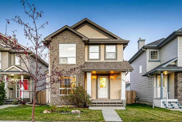 9221 Scott Lane, Edmonton, AB T6R 0E6 (#E4265980) :: The Foundry Real Estate Company
