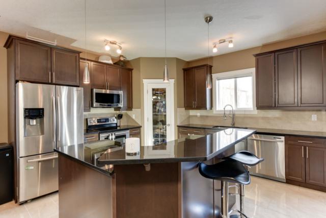 4624 160 Avenue, Edmonton, AB T5Y 3M1 (#E4068232) :: The Foundry Real Estate Company