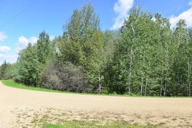 12 54422 Range Road 13, Rural Lac Ste. Anne County, AB T0E 1V0 (#E4097851) :: The Foundry Real Estate Company