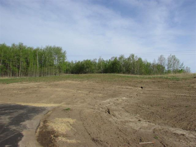 14 53214 Rge Rd 13 Road, Rural Parkland County, AB T7Z 1X6 (#E4099592) :: The Foundry Real Estate Company
