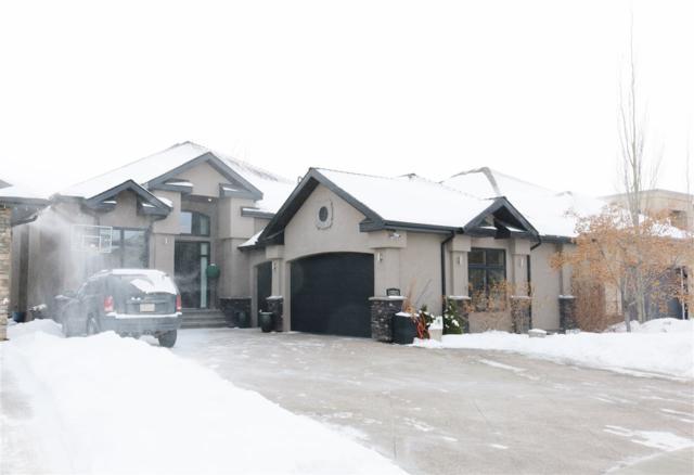 10821 175A Avenue, Edmonton, AB T5Z 0K3 (#E4100380) :: The Foundry Real Estate Company