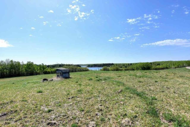 301 57201 Range Road 102, Rural St. Paul County, AB T0A 3A0 (#E4103376) :: Mozaic Realty Group