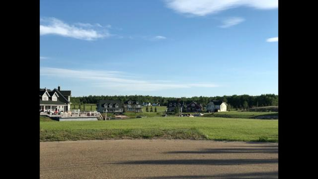7 Sunset Harbour, Rural Wetaskiwin County, AB T0C 1H0 (#E4104609) :: The Foundry Real Estate Company
