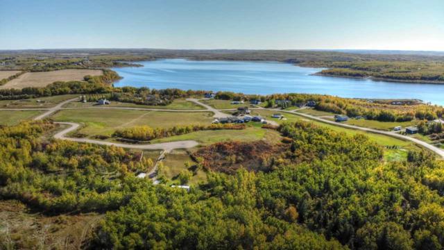 849 56316 RR 113, Rural St. Paul County, AB T0B 4K0 (#E4108333) :: Initia Real Estate