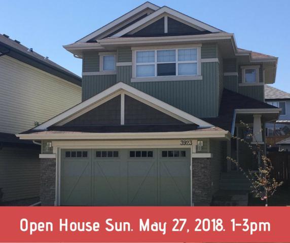 3923 166 Avenue, Edmonton, AB T5Y 0N9 (#E4111114) :: The Foundry Real Estate Company