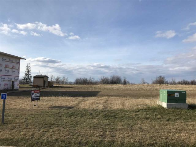 13 Marina View Close, Rural Stettler County, AB T0C 2L0 (#E4123143) :: RE/MAX River City