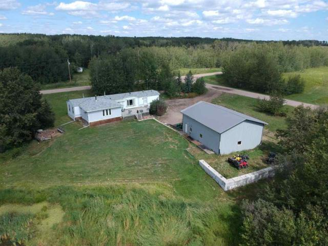 67 50514 Range Road 202, Rural Beaver County, AB T0B 4J2 (#E4124848) :: The Foundry Real Estate Company