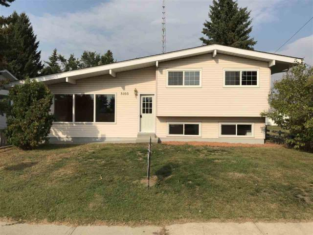 5103 47 Avenue, Forestburg, AB T0B 1N0 (#E4126647) :: The Foundry Real Estate Company
