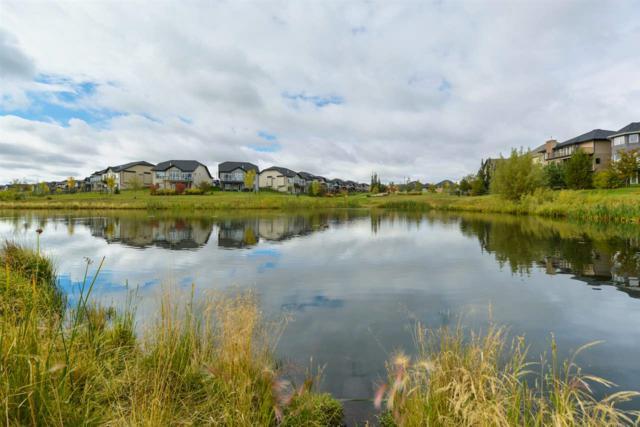 1135 Adamson Drive, Edmonton, AB T6W 0V4 (#E4129059) :: Müve Team | RE/MAX Elite