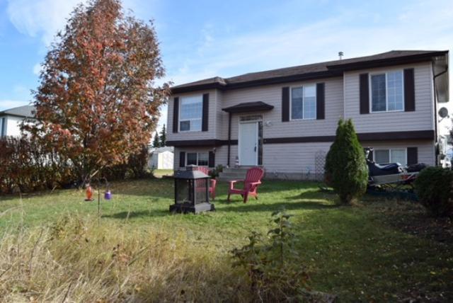 28 Spruce Meadow Lane, Bon Accord, AB T0A 0K0 (#E4129572) :: The Foundry Real Estate Company