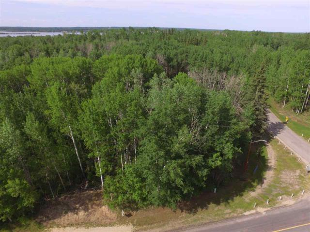 Twp Rd 540 & Silver Sands Drive, Rural Lac Ste. Anne County, AB T0E 0L0 (#E4131536) :: The Foundry Real Estate Company
