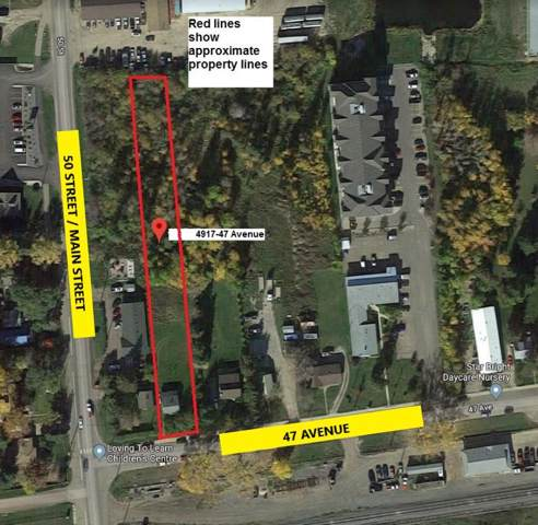 4917 47 Avenue, Stony Plain, AB T7Z 1L7 (#E4133508) :: The Foundry Real Estate Company