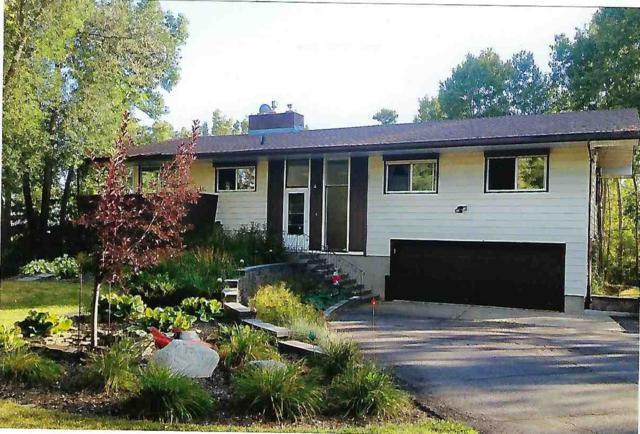 229 Grandisle Point(E), Edmonton, AB T5M 2P1 (#E4136998) :: The Foundry Real Estate Company