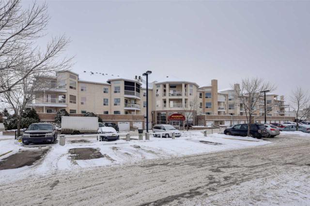 313 15499 Castle_Downs Road, Edmonton, AB T5X 5Y3 (#E4138720) :: Müve Team | RE/MAX Elite