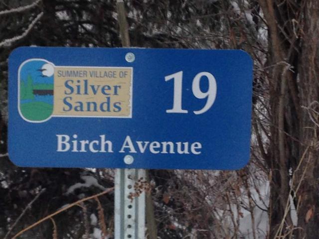19 Birch Avenue, Rural Lac Ste. Anne County, AB T0E 0A0 (#E4139115) :: The Foundry Real Estate Company