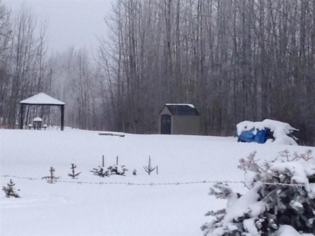 1 54013 RR30, Rural Lac Ste. Anne County, AB T7Y 2T3 (#E4140775) :: Müve Team | RE/MAX Elite
