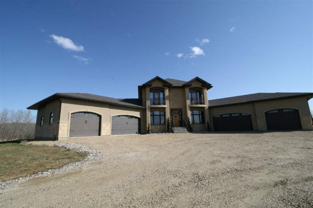 60 50535 Range Road 233, Rural Leduc County, AB T4X 0L4 (#E4145548) :: The Foundry Real Estate Company