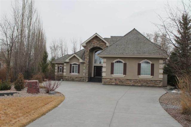22 51025 RGE RD 222, Rural Strathcona County, AB T8C 1J5 (#E4146990) :: Mozaic Realty Group