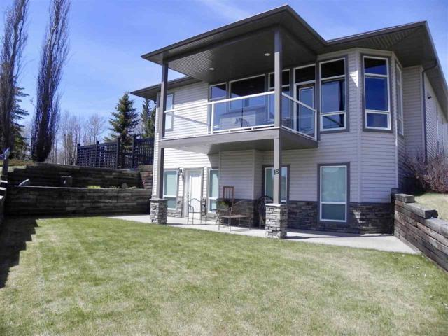 18 Village Creek Estates, Rural Wetaskiwin County, AB T0C 2V0 (#E4147196) :: The Foundry Real Estate Company