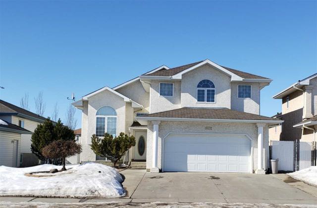 16132 81 Street, Edmonton, AB T5Z 3G1 (#E4147804) :: Müve Team | RE/MAX Elite