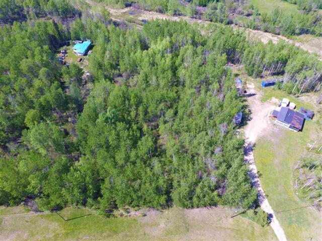 17 55222 RGE RD 33, Rural Lac Ste. Anne County, AB T0E 1A0 (#E4150371) :: Initia Real Estate
