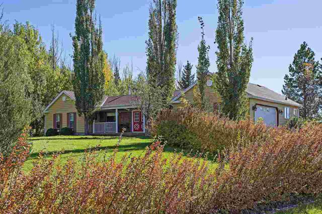 218 53050 RGE RD 220, Rural Strathcona County, AB T8E 2C7 (#E4152302) :: Jenn McPhillamey   YEGPro Realty
