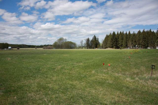 224 62002 TWP RD 462 A, Rural Wetaskiwin County, AB T0C 0T0 (#E4154846) :: The Foundry Real Estate Company