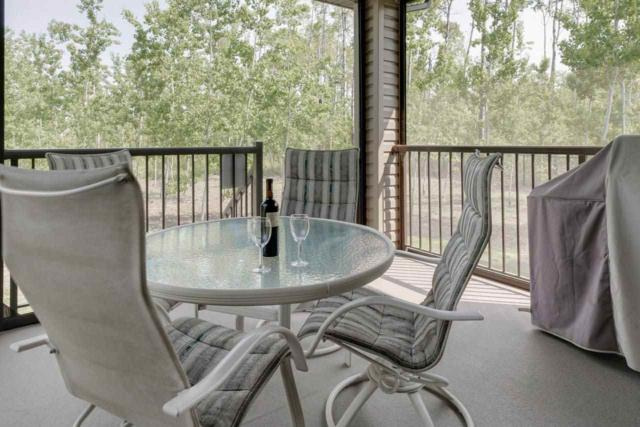 31A-53521 Rge Rd 272, Rural Parkland County, AB T7X 3M5 (#E4154907) :: David St. Jean Real Estate Group