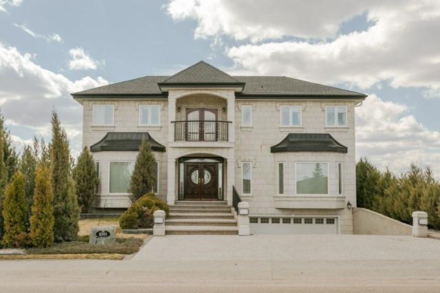 1091 Tory Road, Edmonton, AB T6R 3A7 (#E4155269) :: The Foundry Real Estate Company