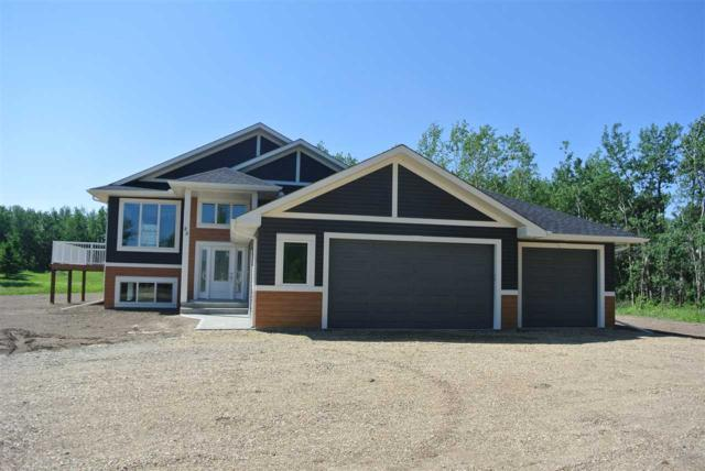 25 52510 Rge 213 Road, Rural Strathcona County, AB T8G 2E6 (#E4159938) :: David St. Jean Real Estate Group