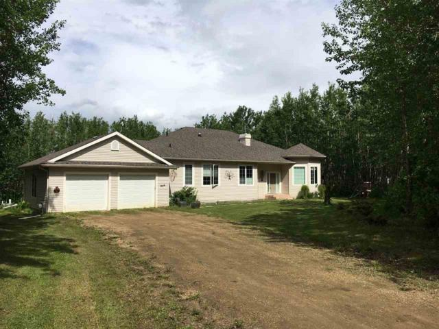 462054 Rr 11, Rural Wetaskiwin County, AB T0C 2V0 (#E4161137) :: Mozaic Realty Group