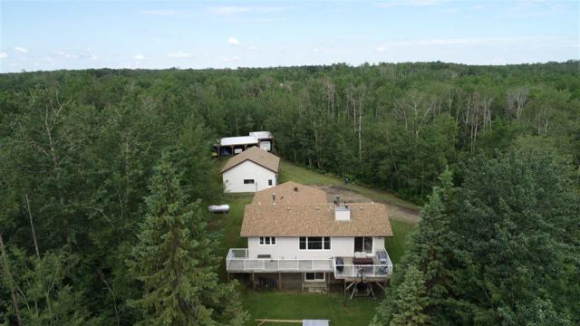 30 50106 RR #204, Rural Beaver County, AB T0B 4J2 (#E4161447) :: David St. Jean Real Estate Group