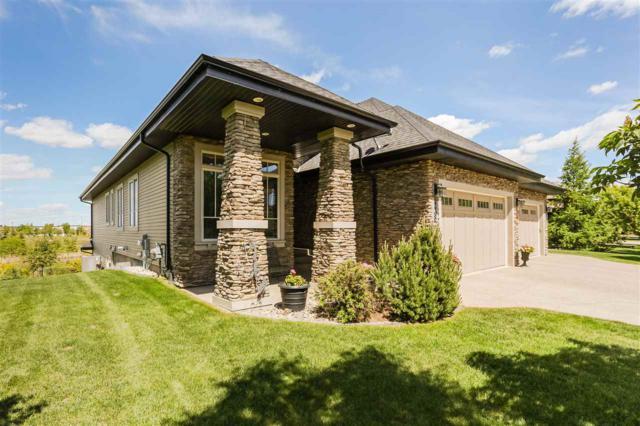 238 Ambleside Drive, Edmonton, AB T6W 0H3 (#E4162461) :: David St. Jean Real Estate Group