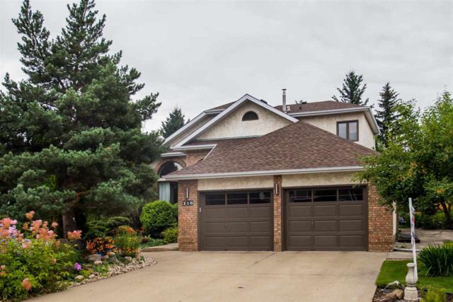 216 Waygood Road, Edmonton, AB T5T 5M4 (#E4168750) :: The Foundry Real Estate Company