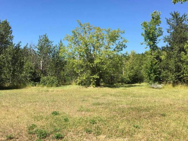 107 - 16435 Twp Rd 602, Rural Smoky Lake County, AB T0A 3C0 (#E4175506) :: David St. Jean Real Estate Group
