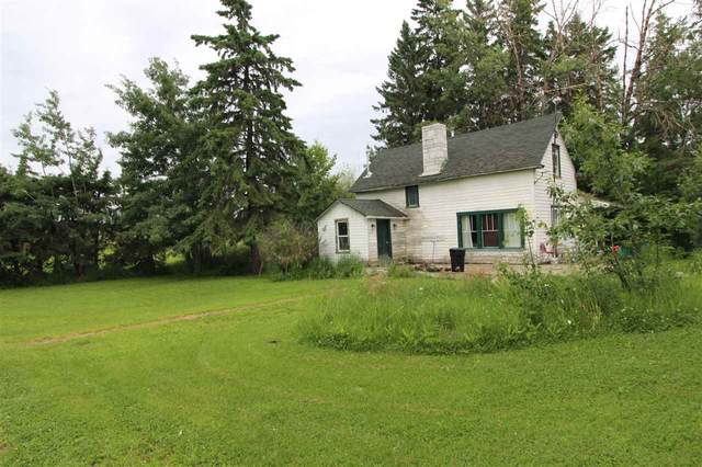 401 Swedberg Street, Rural Wetaskiwin County, AB T0C 2V0 (#E4179846) :: Initia Real Estate