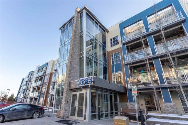 201 2584 Anderson Way, Edmonton, AB T6W 0R2 (#E4182674) :: Initia Real Estate