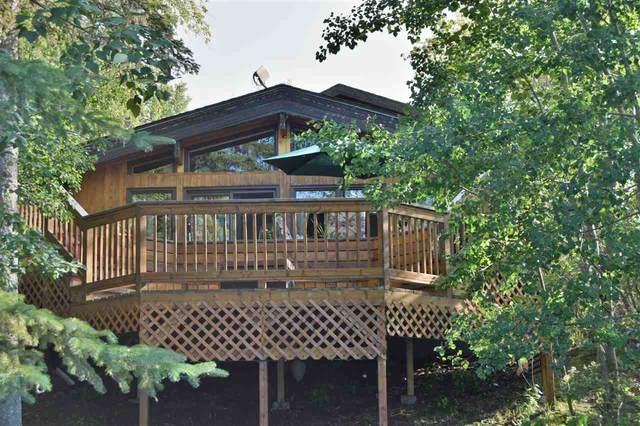 81 Poplar Bay, Rural Wetaskiwin County, AB T0X 2V0 (#E4185181) :: Initia Real Estate