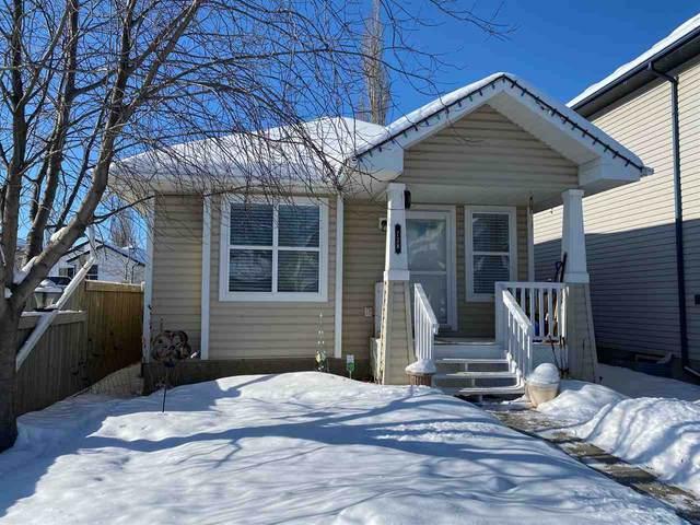 738 88A Street, Edmonton, AB T6X 1C4 (#E4187767) :: Initia Real Estate