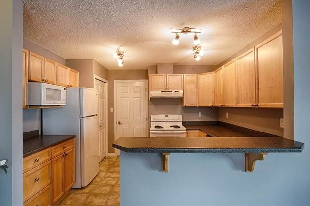 47 3040 Spence Wynd, Edmonton, AB T6X 1N7 (#E4188082) :: The Foundry Real Estate Company