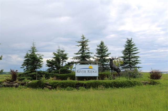 Lot 18 River Ridge Estates, Rural Wetaskiwin County, AB T0C 2V0 (#E4188139) :: Initia Real Estate