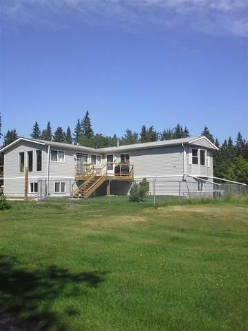 18 473009 RGE RD 243 A, Rural Wetaskiwin County, AB T0C 1Z0 (#E4191908) :: Initia Real Estate