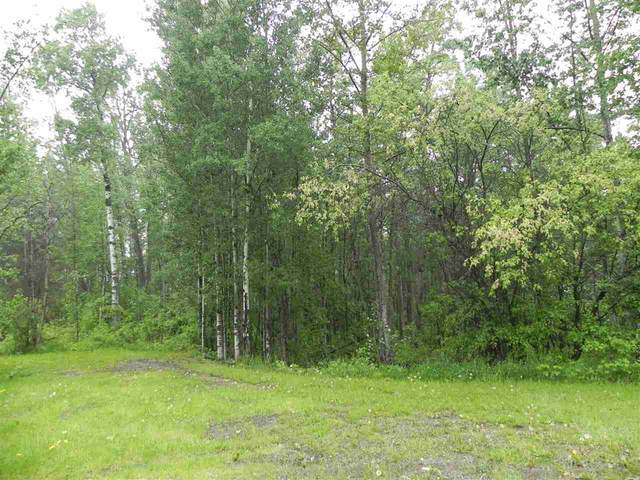 34 53301 RGE RD 32, Rural Parkland County, AB T7Y 0E3 (#E4193650) :: Initia Real Estate