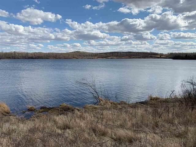 LOT #38 Fish Lake, Rural Flagstaff County, AB T0B 1V0 (#E4194700) :: The Foundry Real Estate Company
