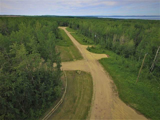 #11 13070 Twp Rd 464, Rural Wetaskiwin County, AB T0C 2V0 (#E4195644) :: The Foundry Real Estate Company