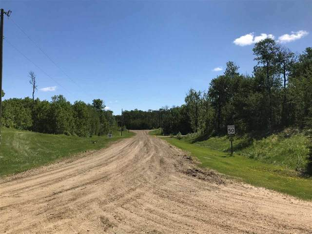 #106 49379 Range Rd. 212, Rural Camrose County, AB T0B 1W0 (#E4198839) :: The Foundry Real Estate Company