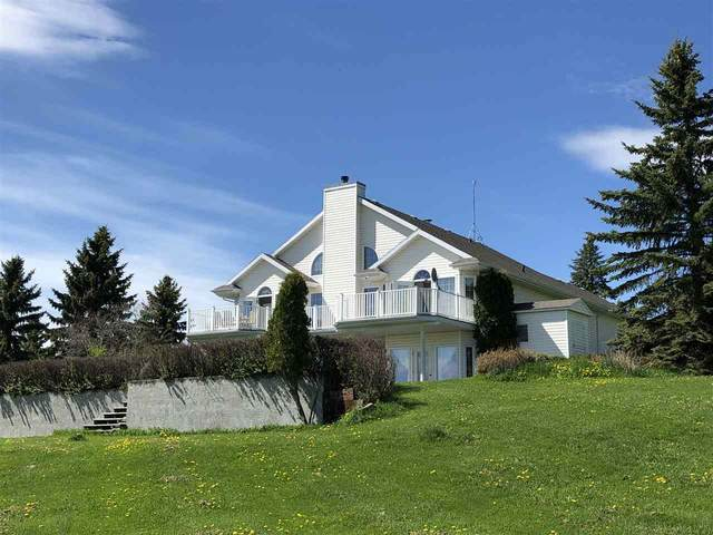 205 1 Ave W, Rural Wetaskiwin County, AB T0C 0T0 (#E4199343) :: RE/MAX River City