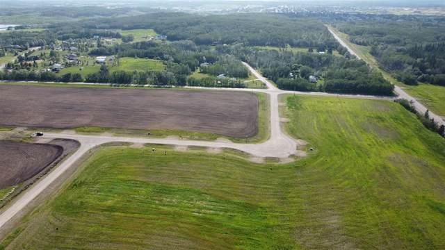 Lot 2 Morris Estates, Rural Bonnyville M.D., AB T9M 1P3 (#E4201522) :: Initia Real Estate